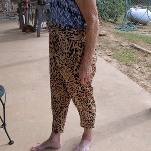 Free People Animal Print Harem Pants